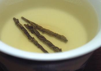 苦丁茶・一葉茶